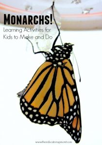 Monarch Butterfly learning activities for Kids