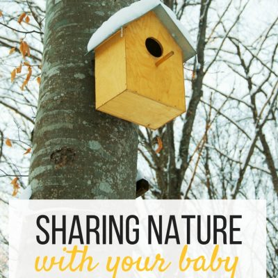 Staying at Home is for the Birds, literally! 6 Nature Activities to Do With Babies