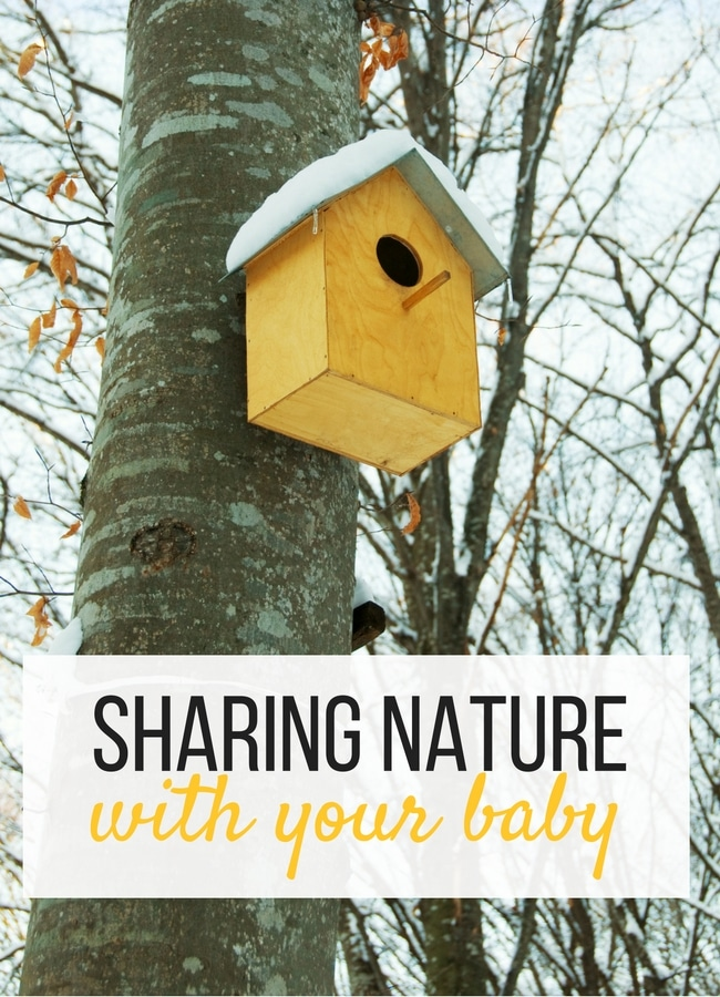 Sharing Nature with your Baby . Tips and Advice on why it's important to include nature to your schedule as a stay at home parent.
