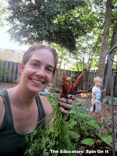 Gardening with kids: Harvesting Carrots