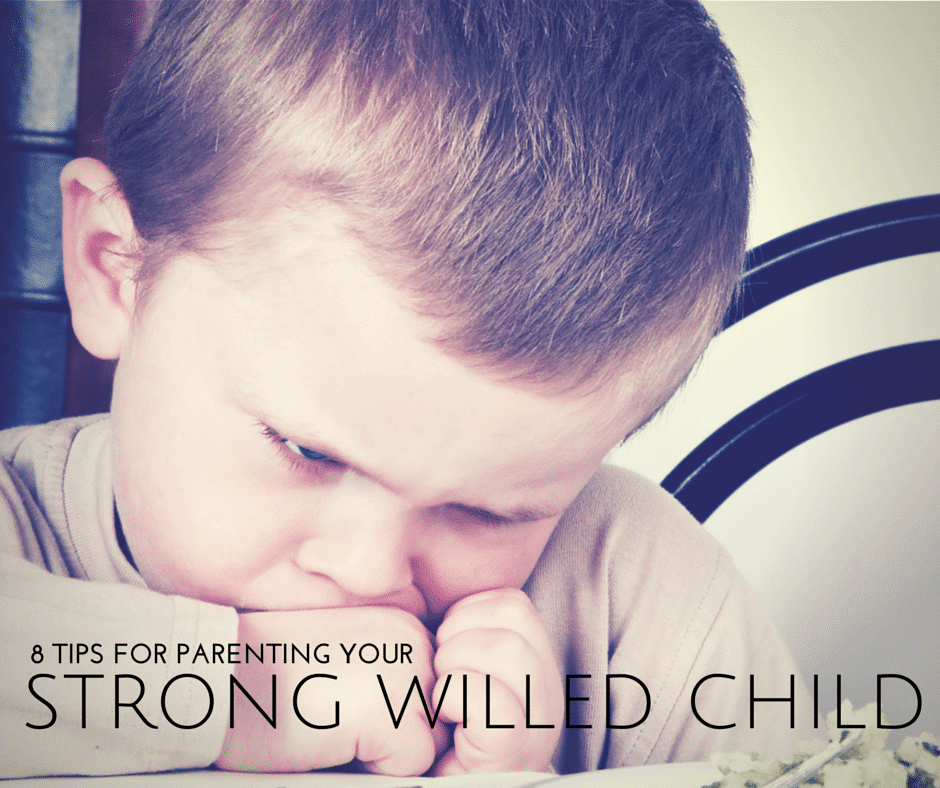 8 tips for Parenting a Strong Willed Child from The Educators' Spin On It