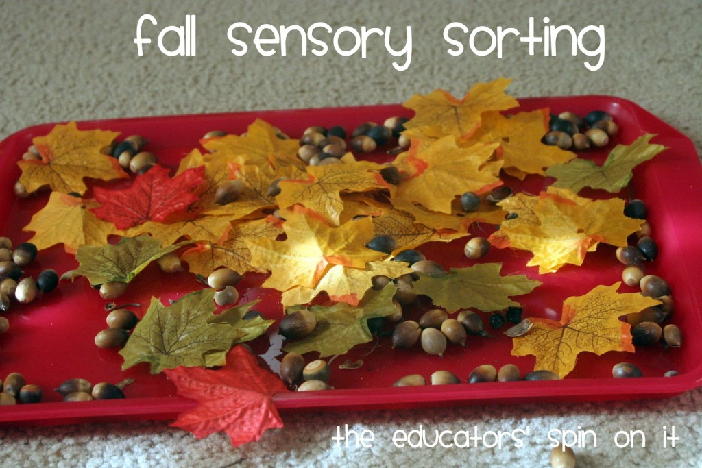 Fall sensory sorting with leaves and acorns for kids on red tray