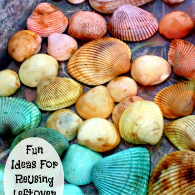 Rainbow Sea Shells