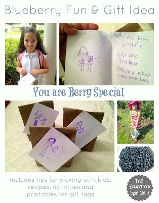 Blueberry Picking and Gift Idea