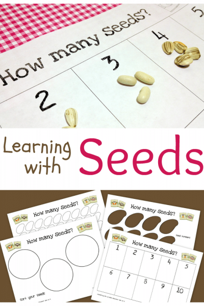 Printable Seed Activities Inspired by The Tiny Seed by Eric Carle