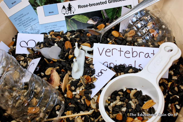 Bird seed sensory bin