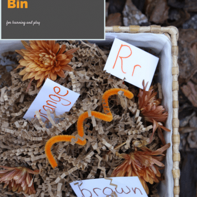 How to Make a Sensory Bin for Multiple Age Children (sibling playful learning activity)
