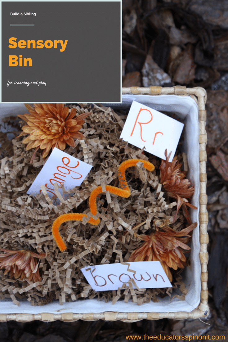 Build a sensory bin for multi-age groups: A sibling play and learning idea.