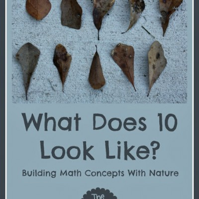 Building Math Concepts with Nature (Playful Preschool)
