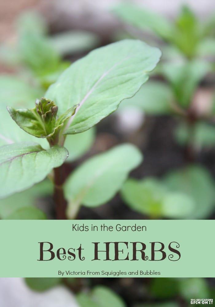 Best herds to grow in garden