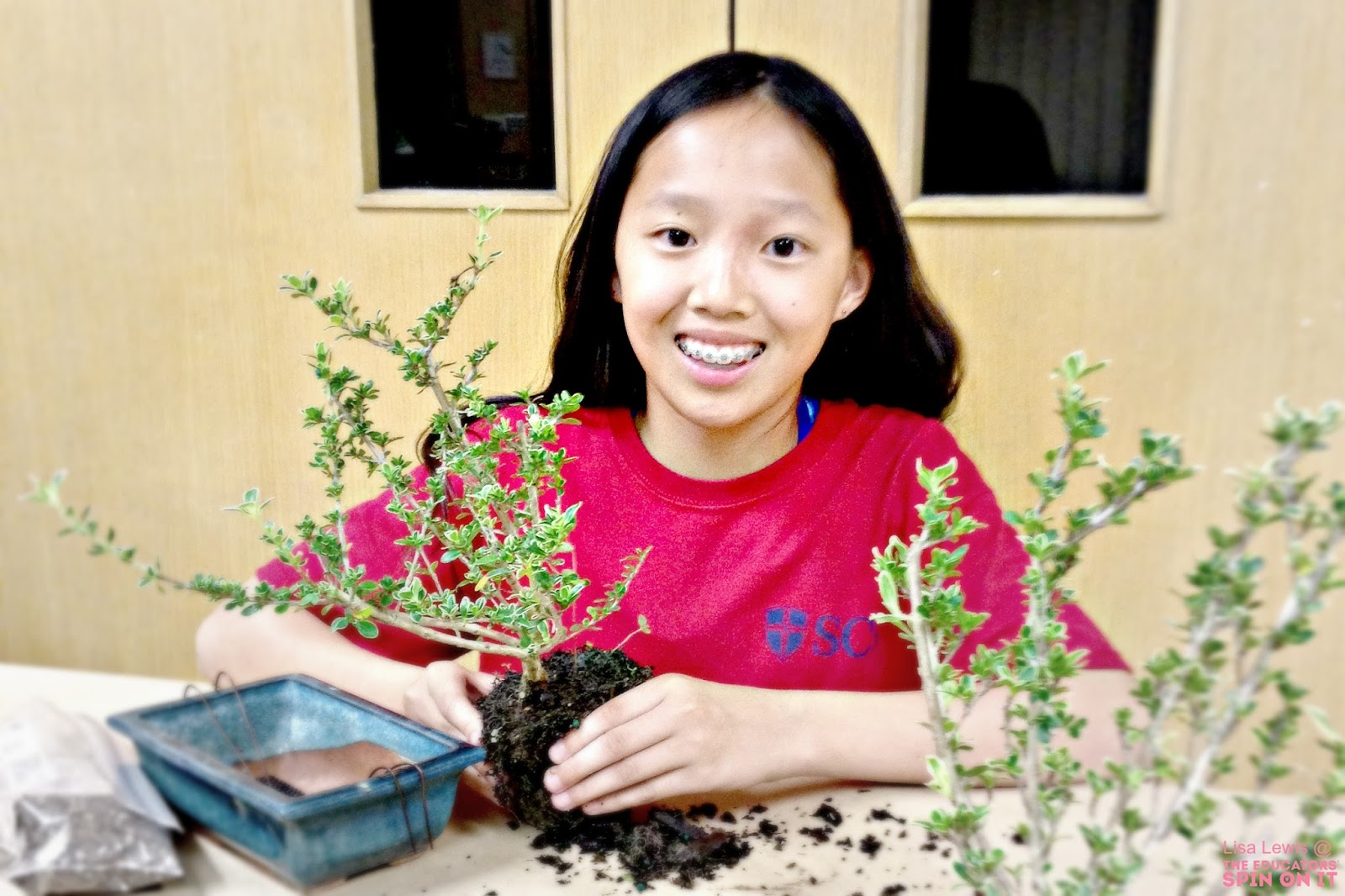 The Art and Science of Bonsai Gardening with Kids