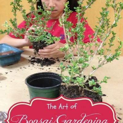 Bonsai Gardening with Kids