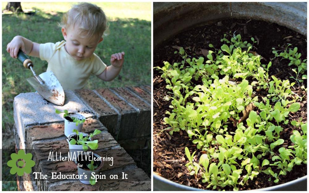 kids gardening activities, container gardening
