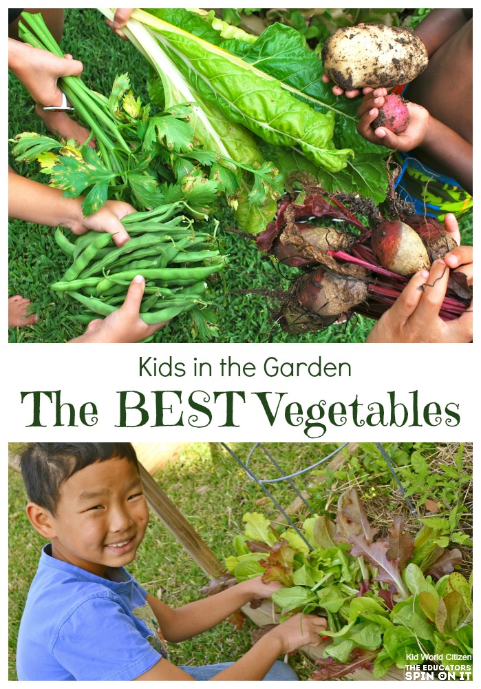 Vegetables harvested from a backyard garden with kids