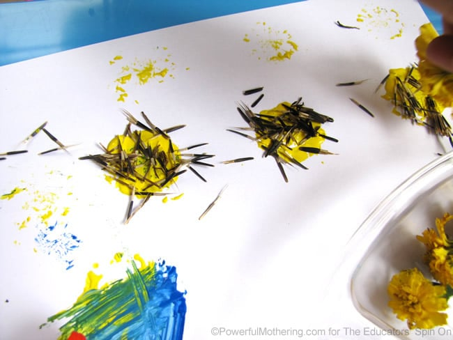 adding seeds to flower art