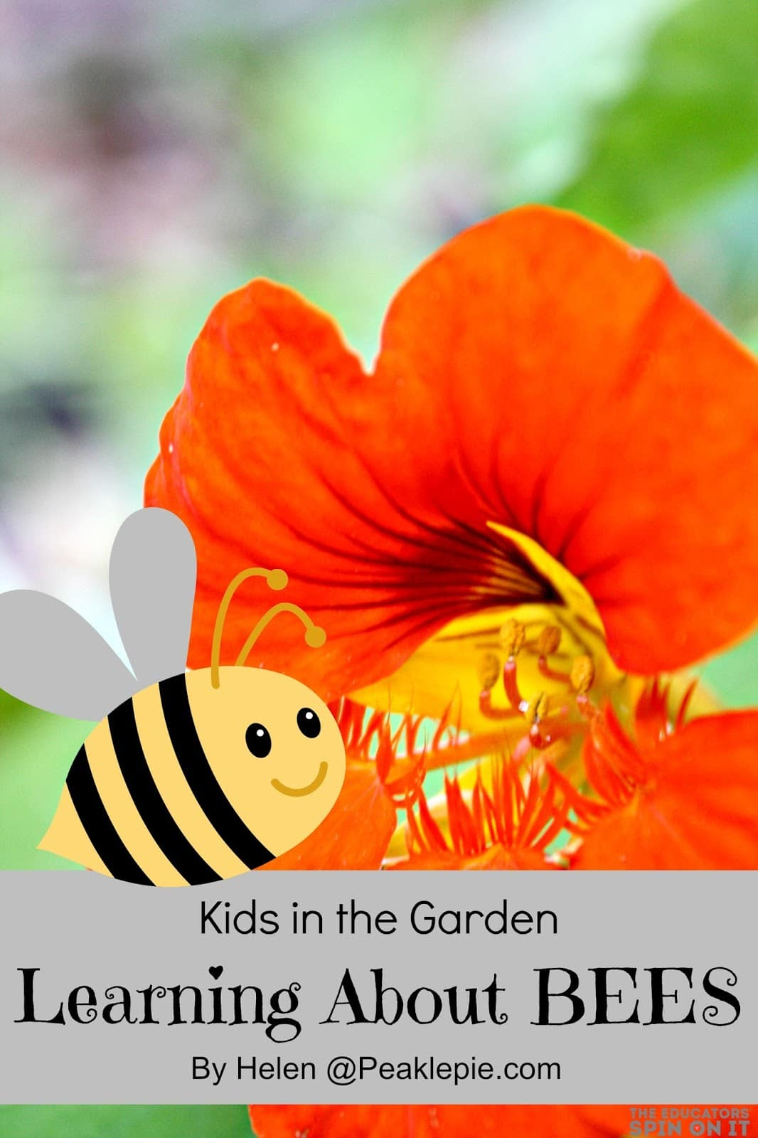 Learning about bees with kids in the garden