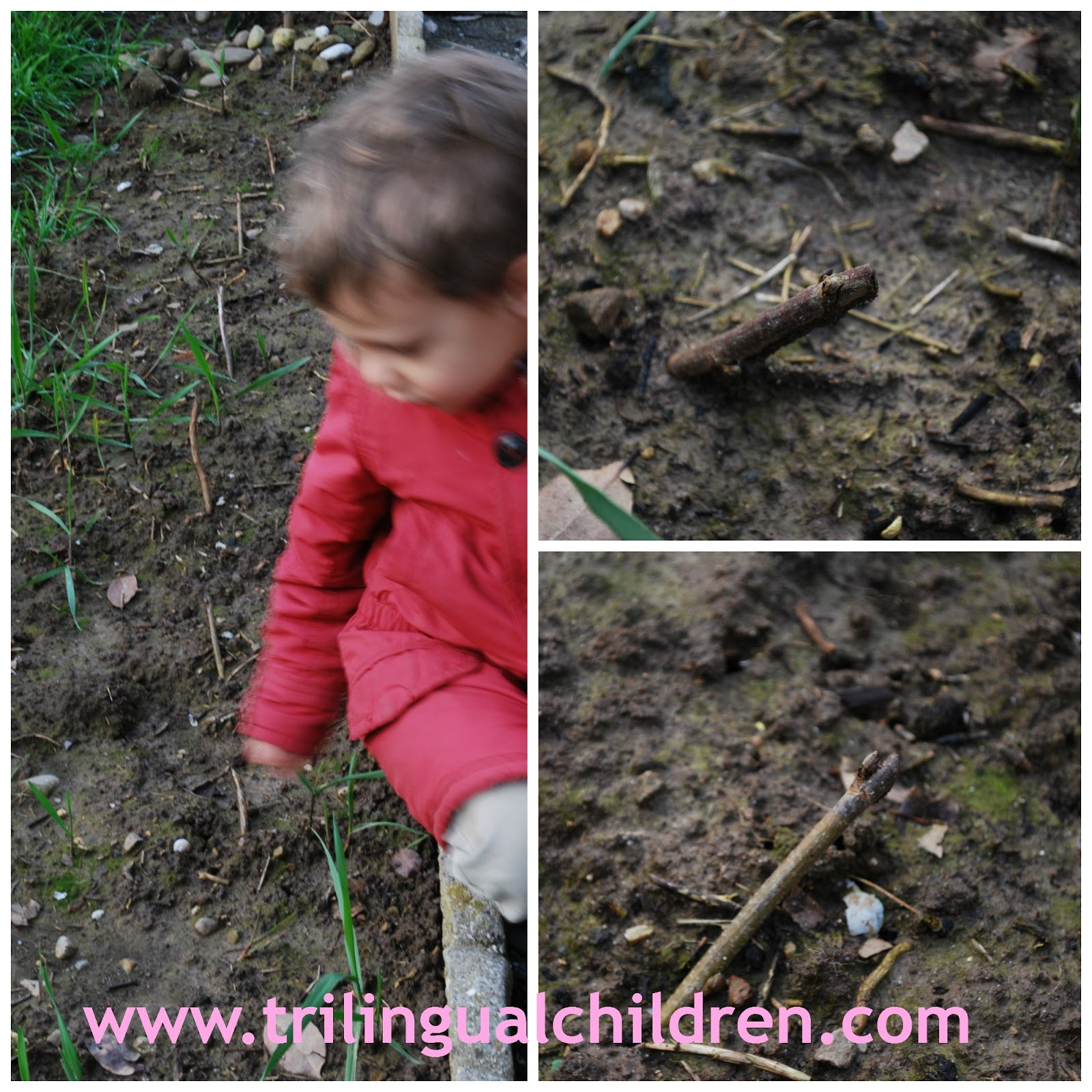 kids in the garden learning and growing