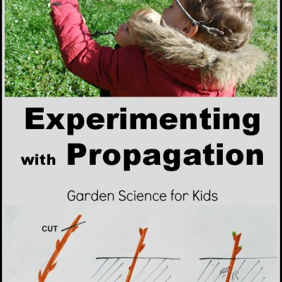 Garden Science Experiments; Propagation