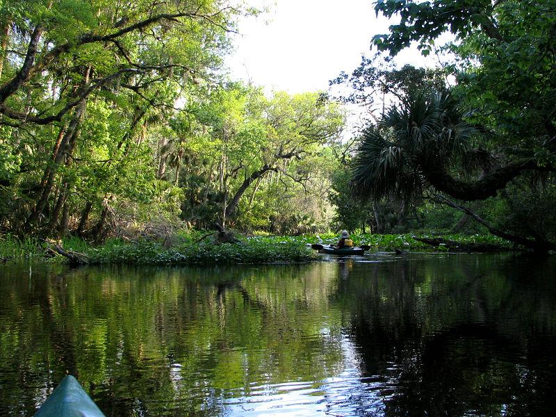 Exploring waterways and springs in Orlando