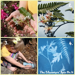 sun print paper project for kids with flowers and fern leaf