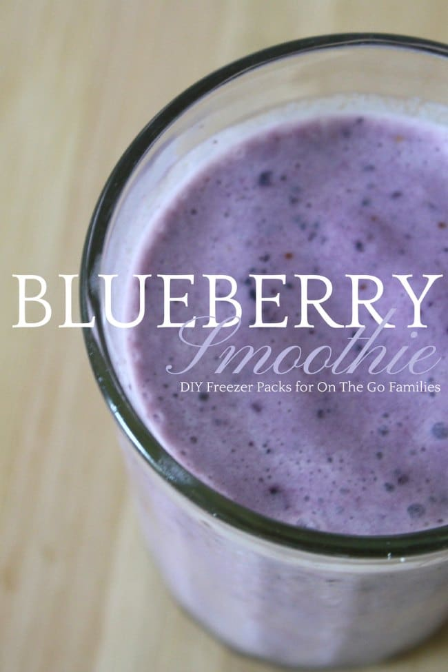 Ready to Blend Blueberry Smoothie Packs for the Freezer