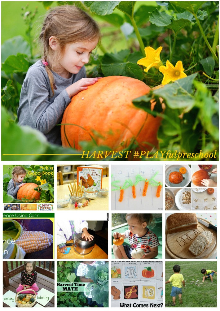 Preschool Activities for HARVEST: preschool math, reading, science, sensory and more!