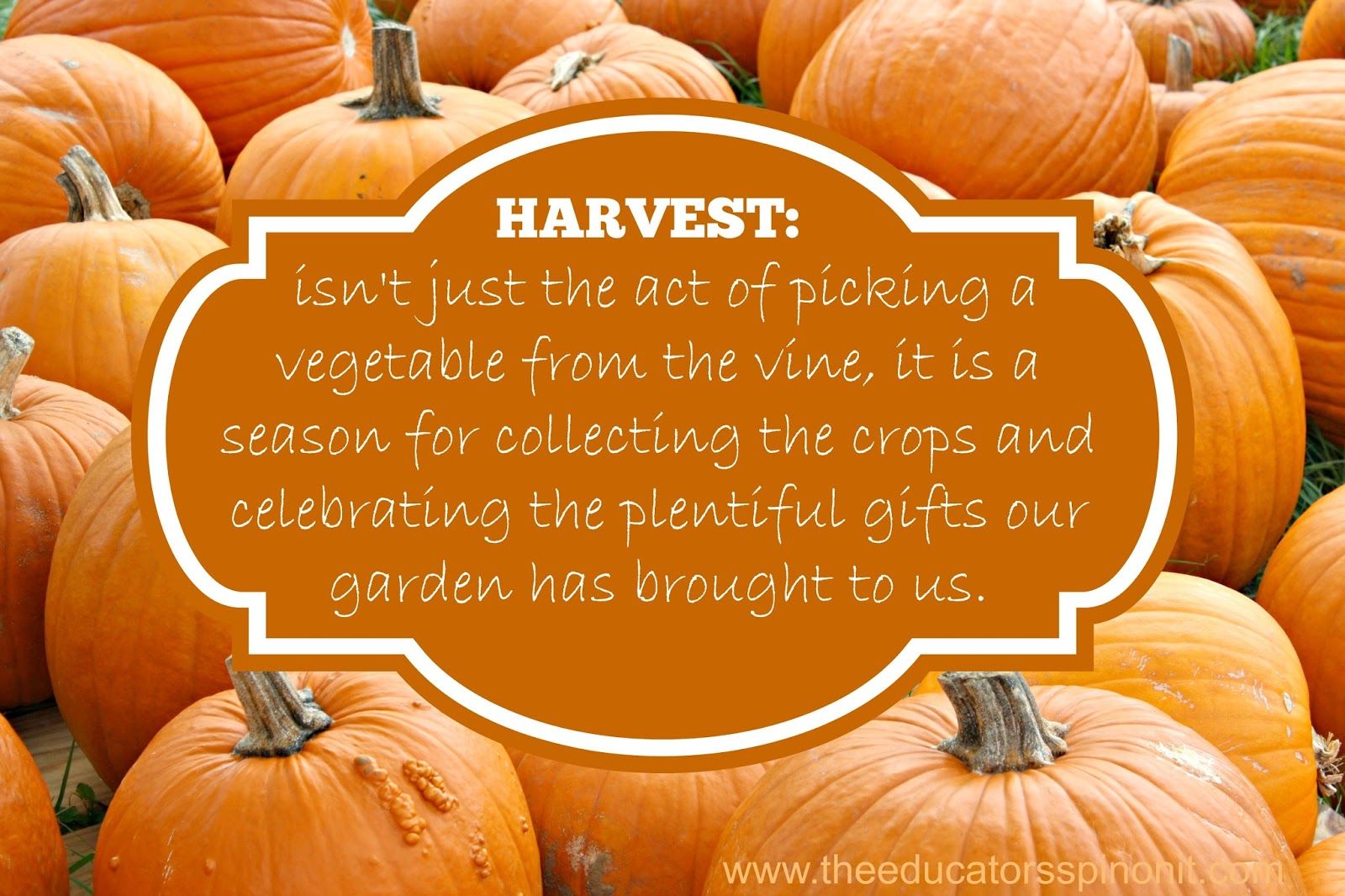 Harvest Party Food Ideas Preschool