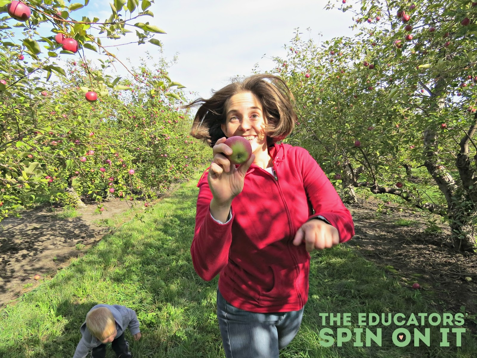 Apple Harvest Picture