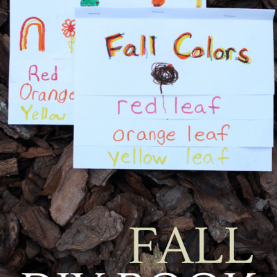 DIY FALL Color Word Book, a Preschool Lesson on Fall Colors