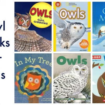 Nighttime Preschool Activities: Night Owl Painting and Books #PLAYfulpreschool