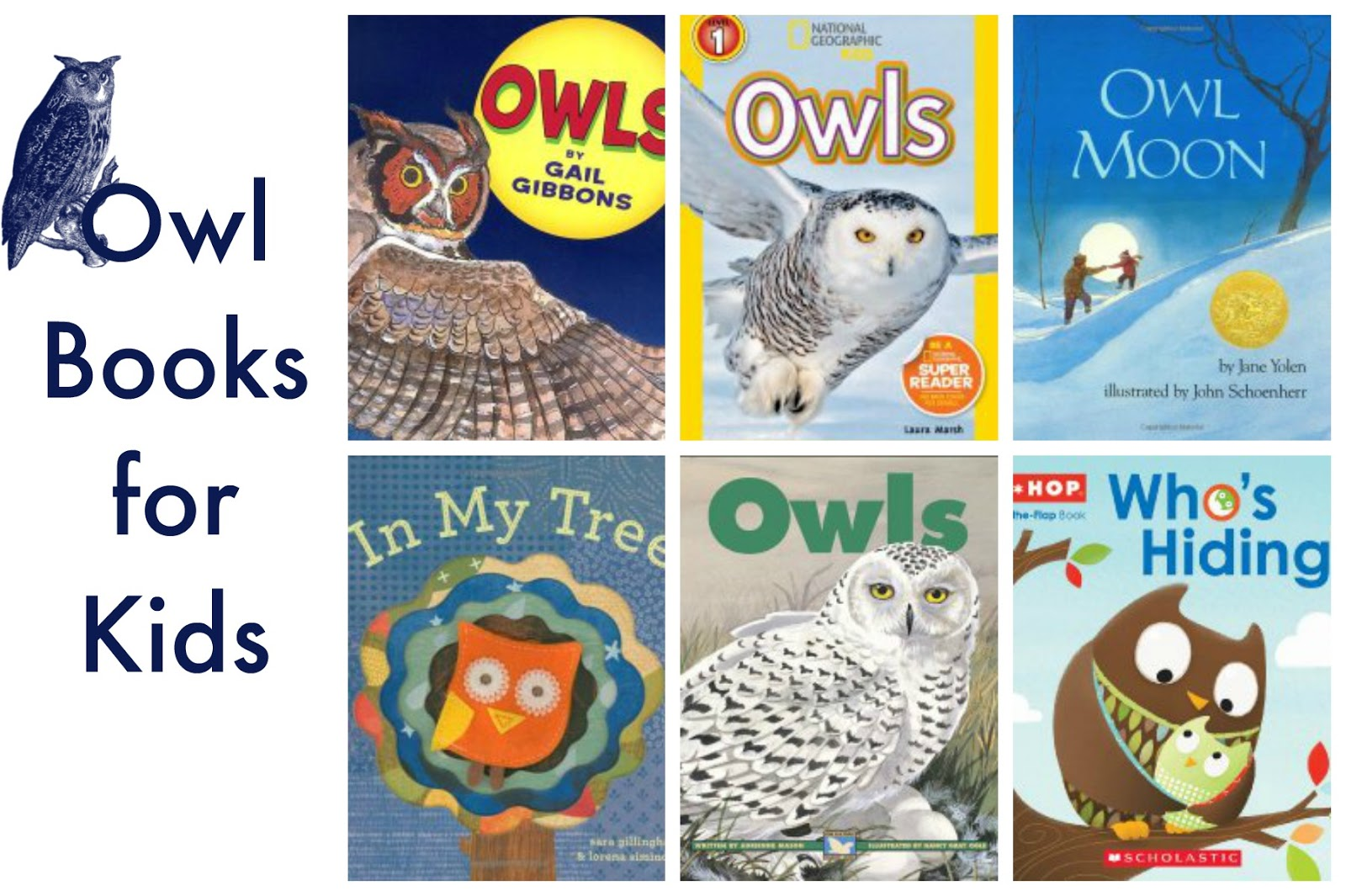 Nighttime Owl Books For Kids