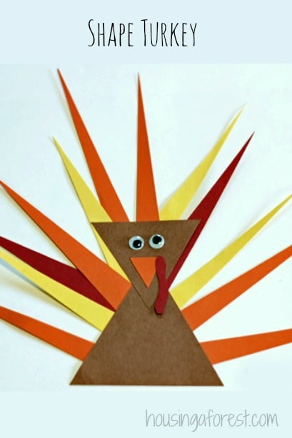 Shape turkey activity