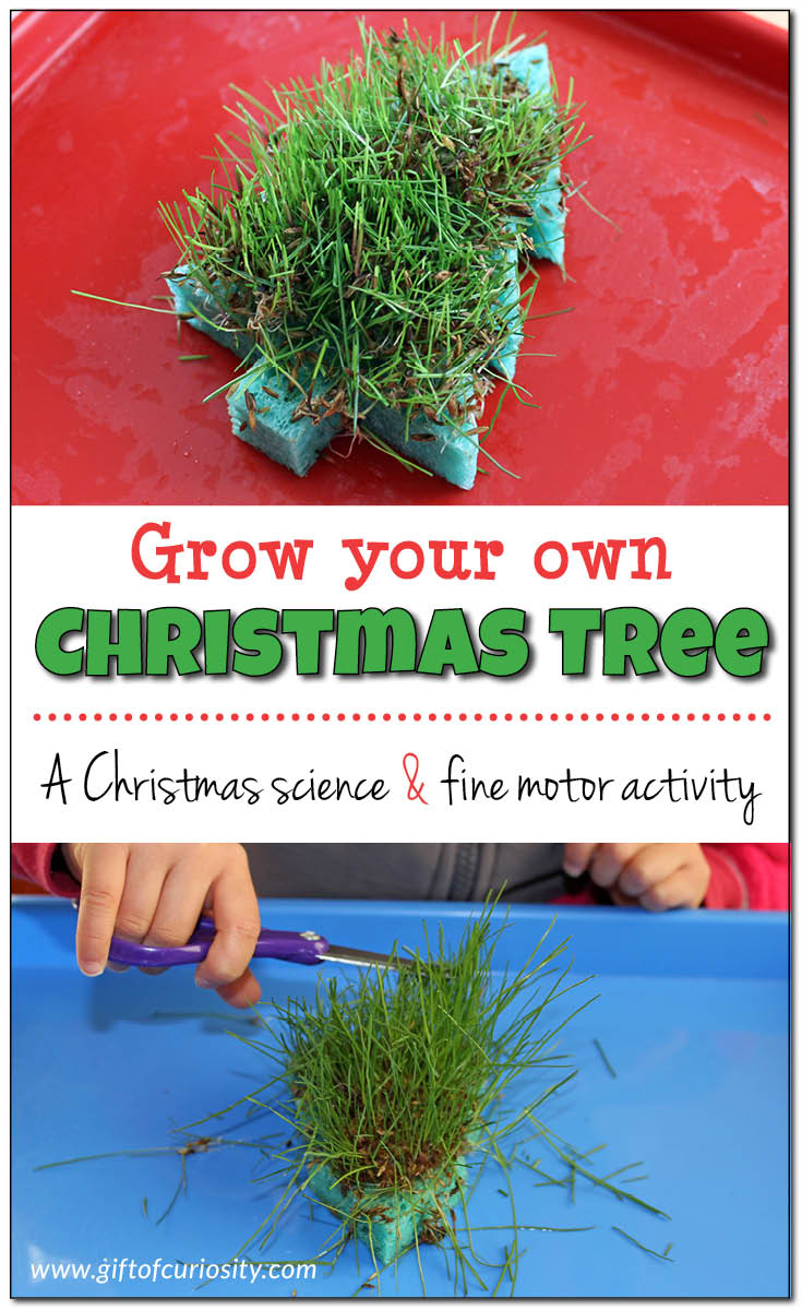 Image Result For Gum Drop Christmas Tree Craft