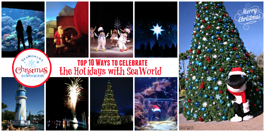 Tips for enjoying SeaWorld Christmas Celebration from The Educators' Spin On It