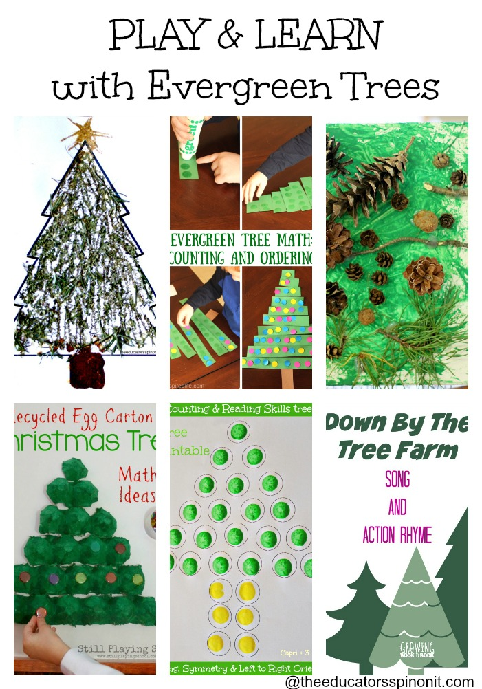 Evergreen tree Activities for Preschool Play and Learning: Preschool Tree Craft, Math Games, Science and more!
