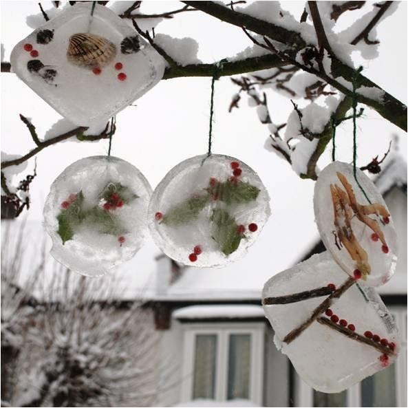 Ice Nature Ornaments for Kids for Winter Science