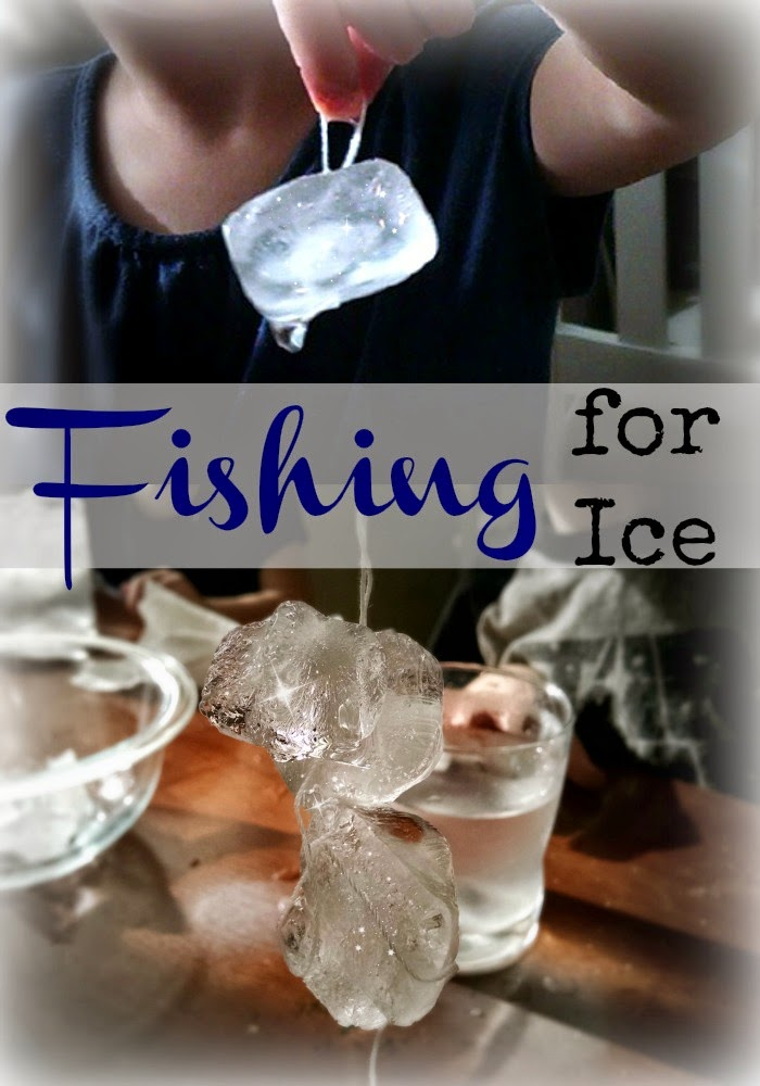 Fishing for Ice Science Experiment
