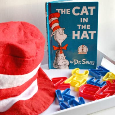 Letter Fun with the Cat in the Hat