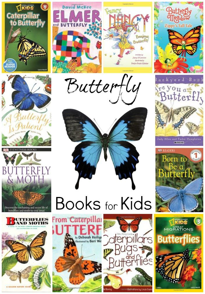 Butterfly books for Kids: Butterfly chapter books, butterfly picture books, butterfly non-fiction text