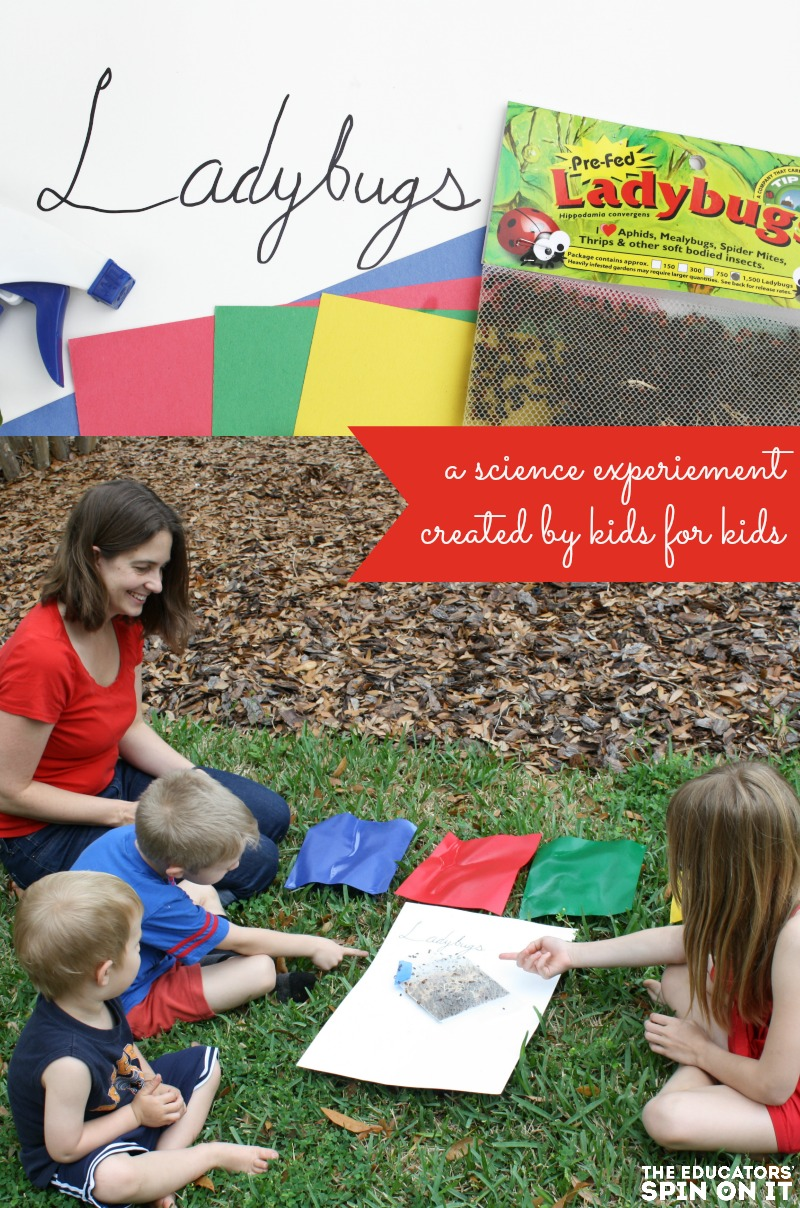 Ladybug Science Experiement. Created by kids for kids. A great way to help your garden and challenge your thinking. Click to find out what color ladybugs really do prefer.