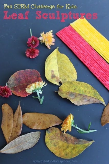 Fall STEm Challenge for kids with leaves