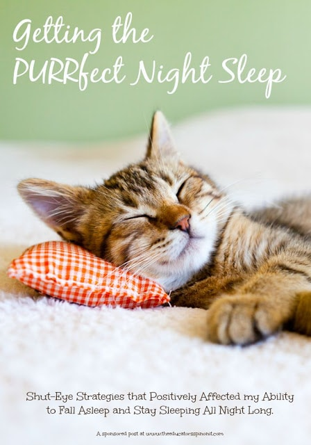 Getting the purrfect night sleep: shut eye strategies that worked for one mom.