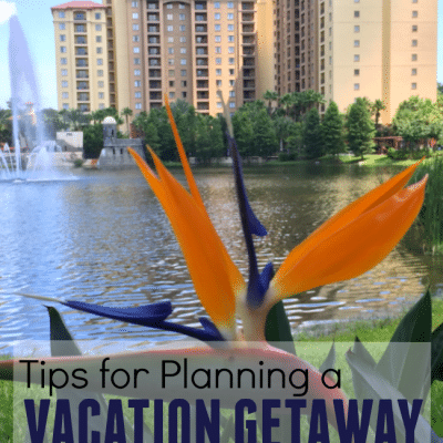 Tips for Planning a Vacation Getaway with Extended Family