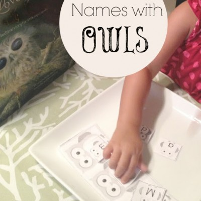 Owl Themed Name Game for Kids