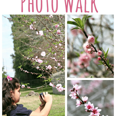 Spring Photo Scavenger Hunt with Kids