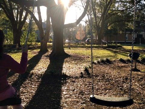 outdoor tree swing