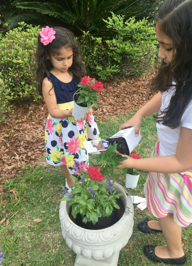 Creating Flower Pots for Butterfly Garden