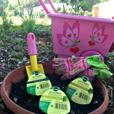 Simple Garden Labels for Kids to Make