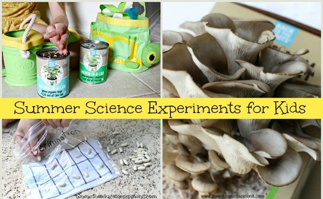 BEST summer science projects for kids to make and observe