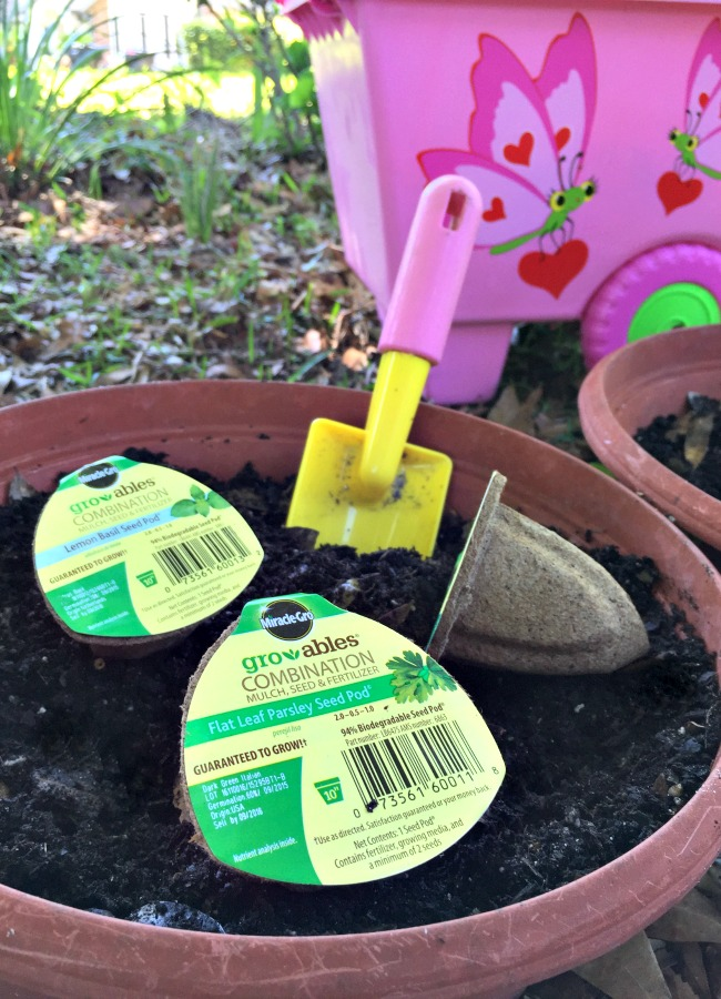 Using Gro-ables to Plant a Container Garden